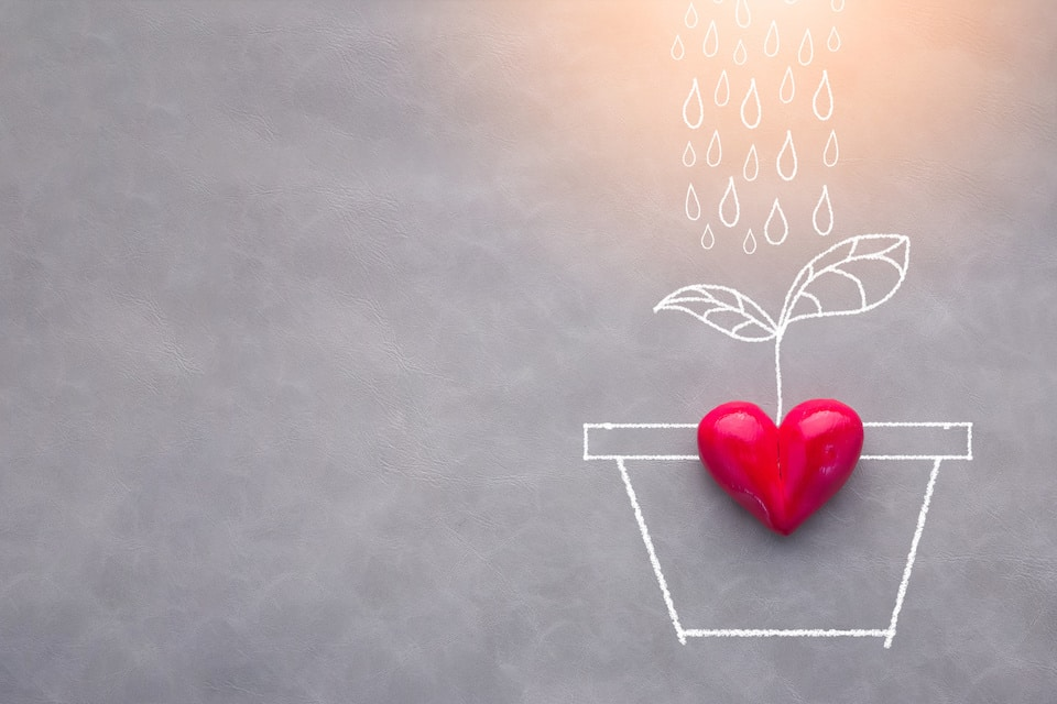 Article featured image showing a love drawing concept with rain falling on a plant vase with a red heart object on top.